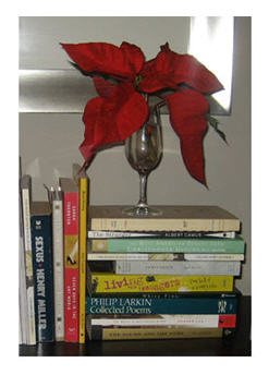 Holiday poinsettia on books