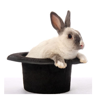 Pulling a Rabbit out of Your Hat