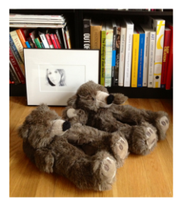 Furry Bear Slippers and Books
