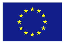 European Union Flag (we've got that covered, too).