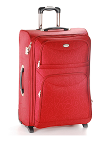 Beautiful Suitcase for Traveling