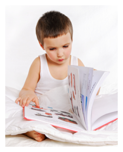 Young Child Engrossed in Reading
