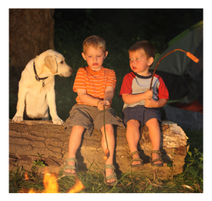 Boys and Dog Camping