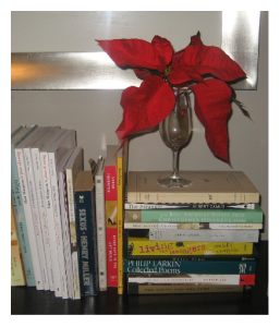 Holiday Decor 5 books