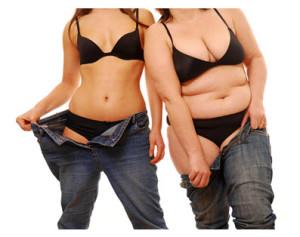 Fat Thin 2