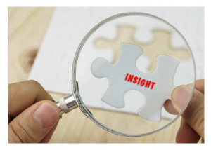 Searching for Insight